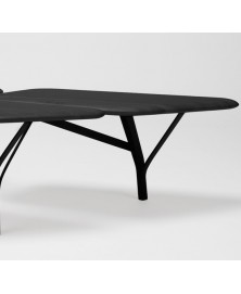 Borghese Coffee Table La Chance img1