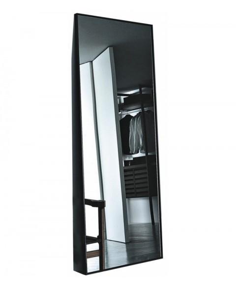 Reflection Mirror Porro img2