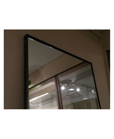 Reflection Mirror Porro img4