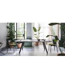 Pixie Table Miniforms img5